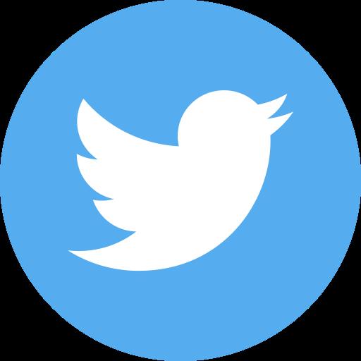 Twitter icon round