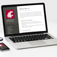 We will be O-K if we have to go on-line... one WSU faculty member's perspective