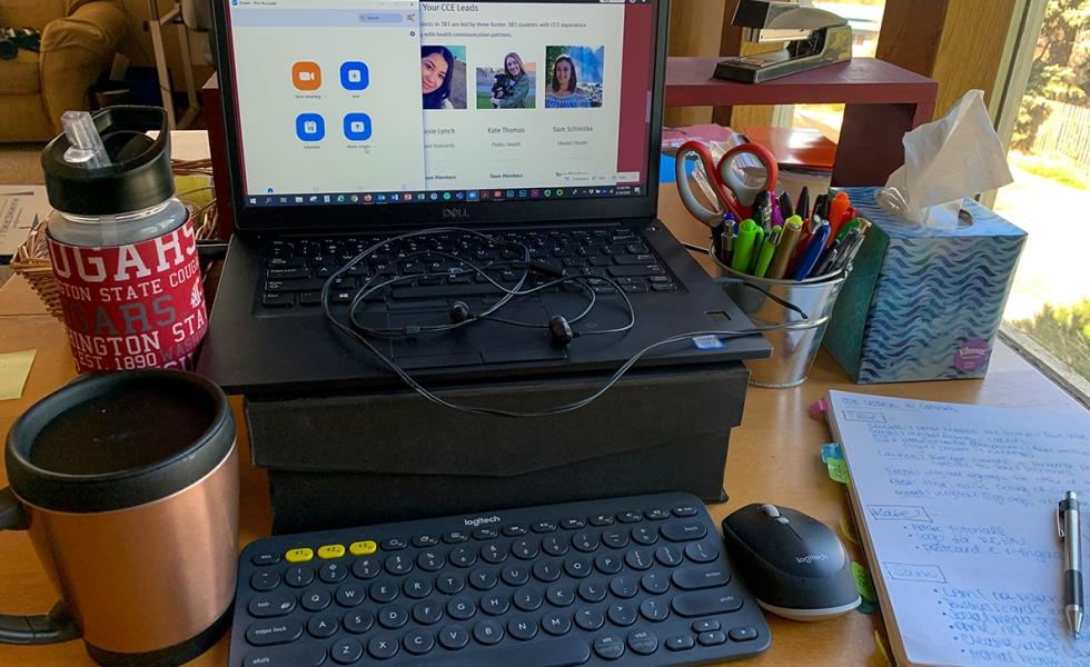 Zoom at home desk